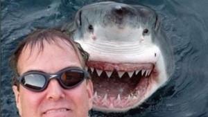selfie-killer-shark