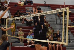 Gallery: TSSAA high school volleyball, Milan at Crockett County